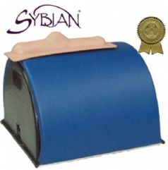 sx machines sybian 2016